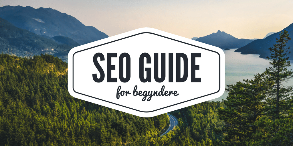 seo guide for begyndere
